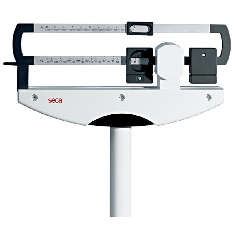 Stand up bathroom scales